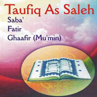 Taufiq salleh wedding